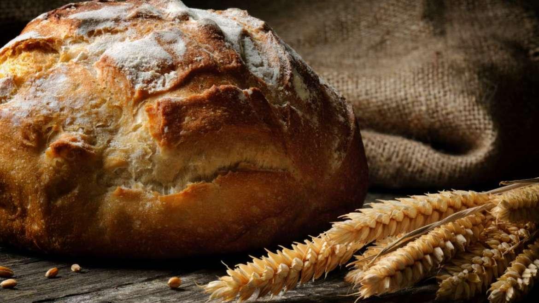Madre-kovászos kenyér