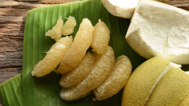 Pomelo – a citrusóriás
